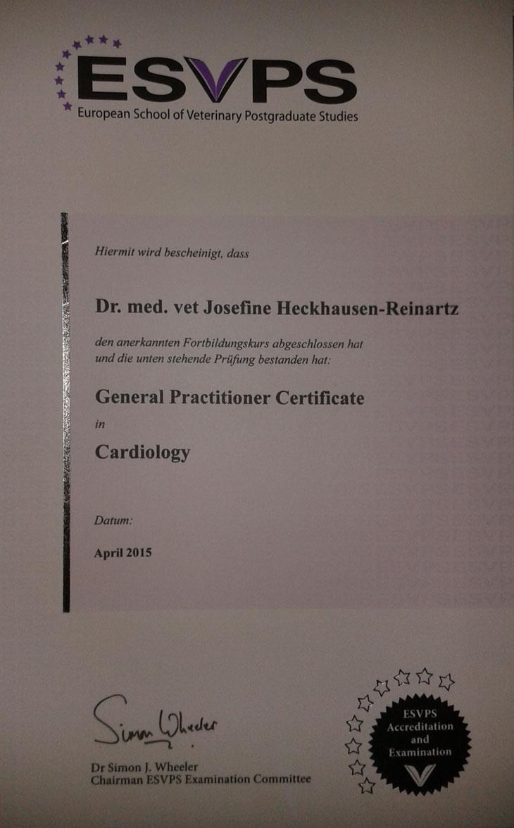 Zertifikat Kardiologie Dr Reinartz Jülich